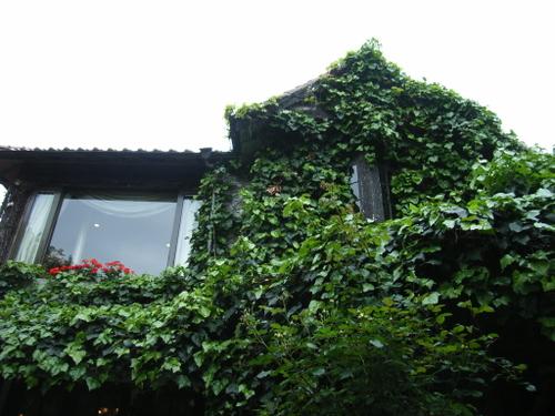 19.ガーデンコートより二階をあおぐ