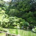 05.智積院庭園