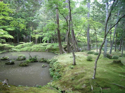 27.西芳寺(苔寺)