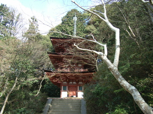 05.浄瑠璃寺